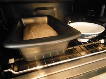 Whole Wheat Sourdough Bread Recipe 1 Small Loaf Bridle
